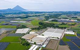 南日本畜産